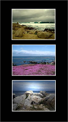 Photograph - Seascape Triptych by Joyce Dickens