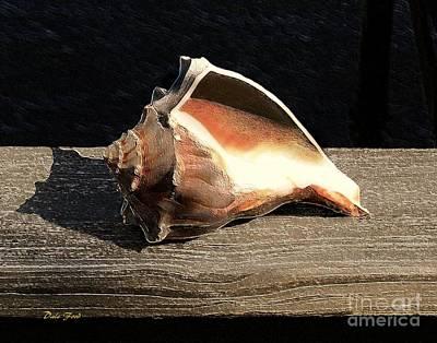 Digital Art - Seashell by Dale   Ford