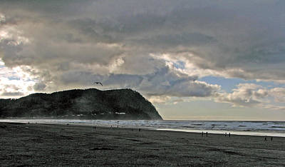Photograph - Seaside Clouds by Chris Anderson