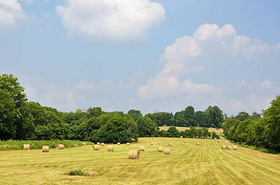 Tennessee Hay Bales Photograph - Season Of Plenty by Jan Amiss Photography