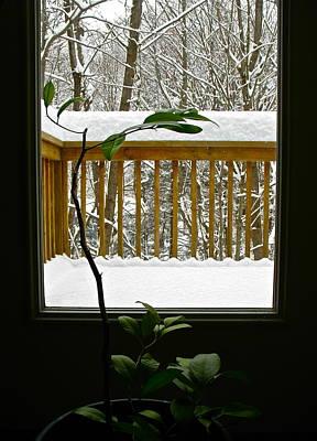 Photograph - Seasons by Cliff Spohn
