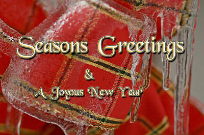 Photograph - Seasons Greetings Joyous New Year by Michael Flood