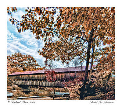 Art Print featuring the photograph Seated For Autumn by Richard Bean