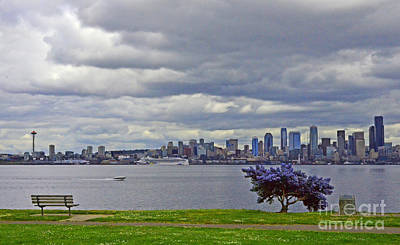 Photograph - Seattle From Alki Beach by Jack Moskovita