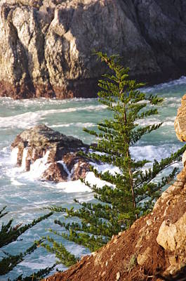 Secluded Big Sur Cove 2 Art Print by Jeff Lowe