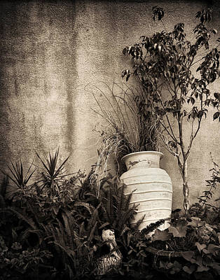 Photograph - Secret Garden by Mario Celzner