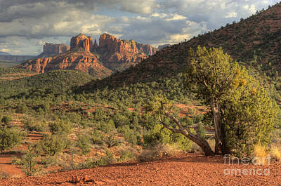 Photograph - Sedona Red Rock Viewpoint by Sandra Bronstein