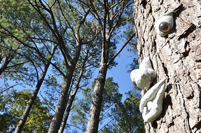 See Da Tree Art Print