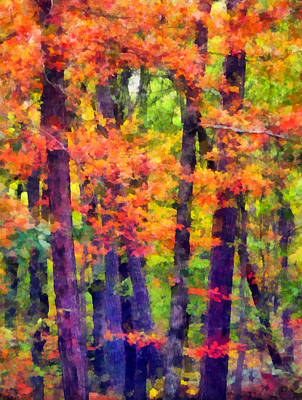 Fall Foliage Mixed Media - Seeing The Forest by Angelina Vick