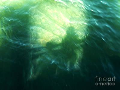 Photograph - Self Reflection by Tina Broccoli