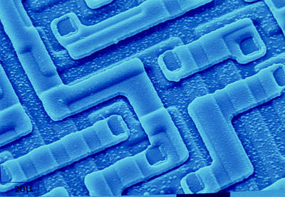 Sem Of Integrated Circuit Fron Computer's Art Print by Pasieka