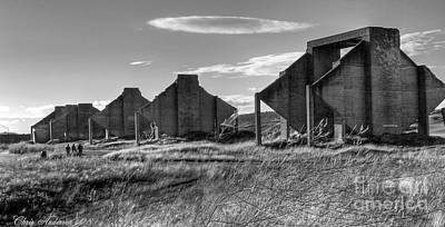 Photograph - Sentinels - Chambers Bay Golf Course by Chris Anderson