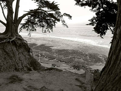 Photograph - Sentinels View Of The Ocean Black And White by Kathleen Grace