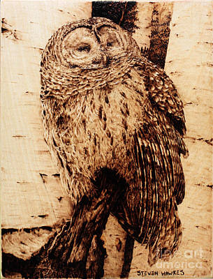 Pyrography Pyrography - Sentry by Steven Hawkes