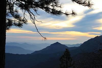 Sunset Photograph - Sequoia Tranquility by Caroline Lomeli