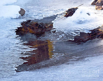 Serendipity In Ice  Art Print