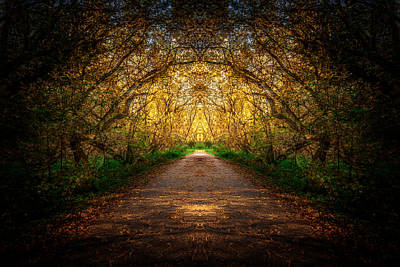 Photograph - Serene Archway by Anthony Rego