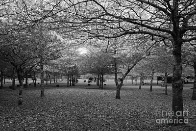 Furnas Photograph - Serene Landscape by Gaspar Avila