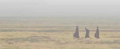 Photograph - Serengeti Dust by Joe Bonita