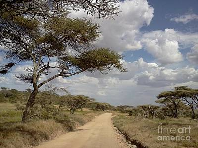 Photograph - Serengeti Highway by Chris Scroggins