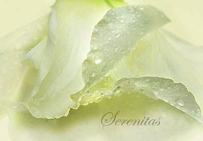 Art Print featuring the photograph Serenitas by Deborah Smith