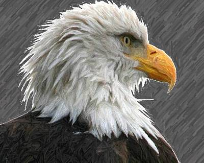 Digital Art - Serious Eagle by Carrie OBrien Sibley