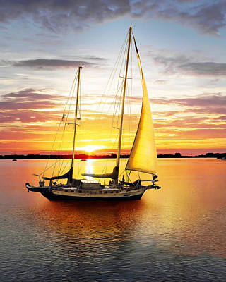 Photograph - Setting Sail by Francesa Miller