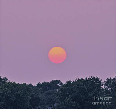 Photograph - Setting Sun by Cindy Lee Longhini