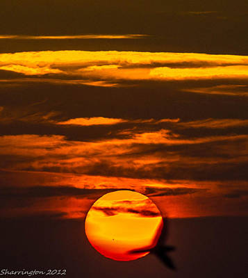 Photograph - Setting Sun Flyby by Shannon Harrington