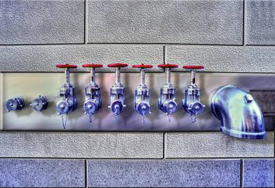 Photograph - Sextuplets  by Paul Wear