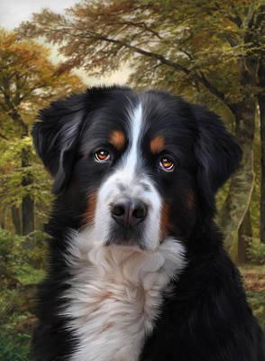 Canines Digital Art - Sezare by Julie L Hoddinott