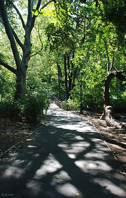 Travel Rights Managed Images - Shaded Paths In Central Park Royalty-Free Image by Rob Hans