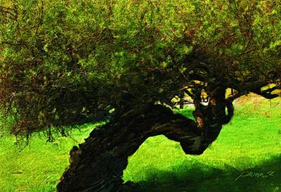 Painting - Shadow Tree Carmel Valley by Jim Pavelle