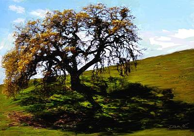 Painting - Shadow Tree Two Carmel Valley by Jim Pavelle