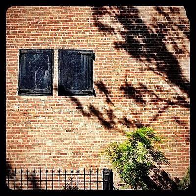 Shadow Photograph - Shadows & Shutters by Natasha Marco