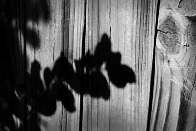 Farm Photograph - Shadows And Textures I by Kelly Hazel