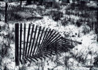 Photograph - Shadows On The Dune by Judi Bagwell