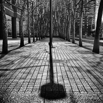 Shadows On The Ground Art Print