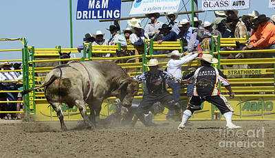 Bull Riding Photograph - Rodeo Shaking It Up by Bob Christopher