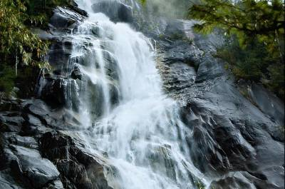 Photograph - Shannon Falls by Sandra Sigfusson
