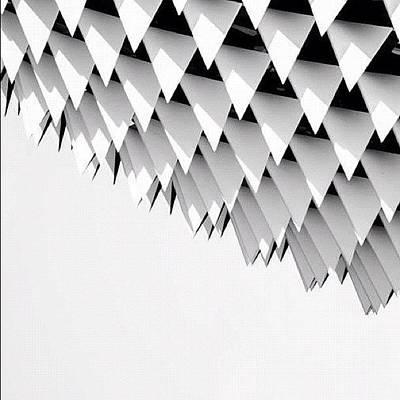 Surface Wall Art - Photograph - Sharp-rain by Zachary Voo