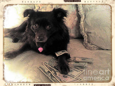 Sweet Success Photograph - She Is In The Money by Nina Prommer