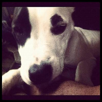 Iphone 4 Photograph - She Owns My ❤ by Joseph Stowers