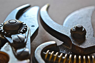 Photograph - Shears II by Bill Owen