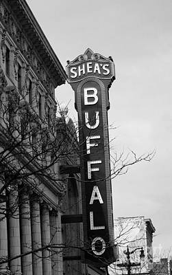 Sheas's Buffalo Print by Kathleen Struckle