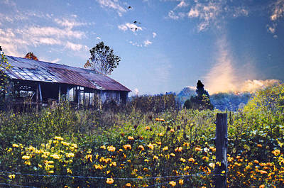 Shed In Blue Sky Art Print by Walt Jackson