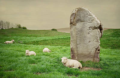 Photograph - Sheep At Avebury Stones - Textured by Marilyn Wilson