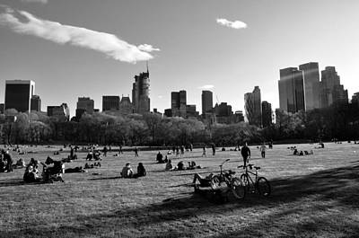 Photograph - Sheep Meadow by Andrew Dinh