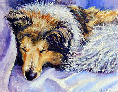 Sheltie Napster Art Print by Lyn Cook