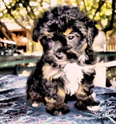 Painting - Sheltie Puppy by Scott B Bennett